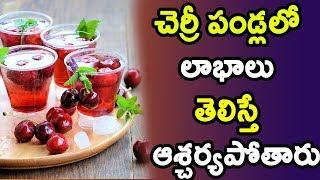 చెర్రీ పండ్లలో లాభాలు తెలిస్తే ఆశ్చర్యపోతారు | Health Benefits of Cherry Juice |