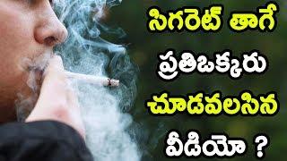 సిగరెట్ తాగే ప్రతిఒక్కరు చూడవలసిన వీడియో ? | Smoking Effects |