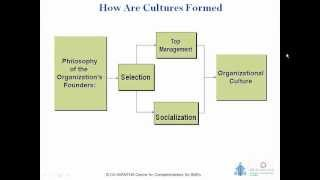Leading Cultural Change in Organisations