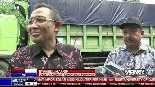 Penyaluran Jagung Subsidi Cegah Peternak Menelan Kerugian
