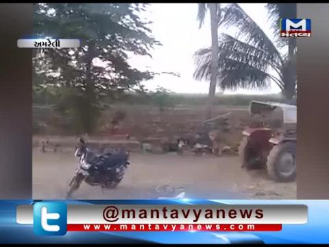 Amreli: Viral video of lion walking in the Rajula Village | Mantavya News