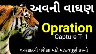 Avani tigress || operation capture T-1 || current affairs in gujarati || cn learn