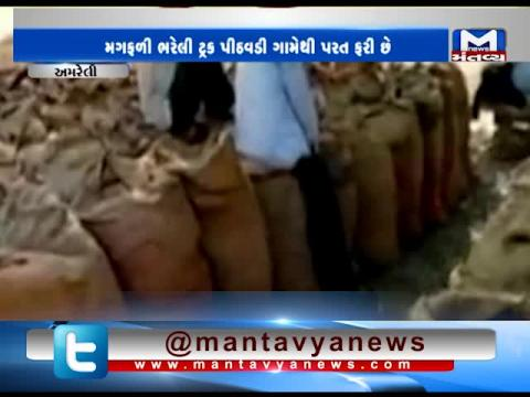 Amreli: Farmers are unhappy with government procedure of purchasing groundnut at MSP