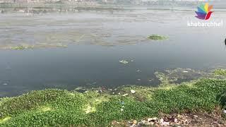 જળકુંભીના કારણે તાપી નદીનું અસ્તિત્વ જોખમમાં