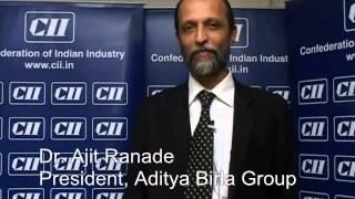 Dr. Ajit Ranade President & Chief Economist Aditya Birla Group at CII's AGM 2013