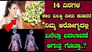 14 ದಿನ ಏಲಕ್ಕಿ ನೀರನ್ನು ಕುಡಿದು ನೋಡಿ ನಿಮ್ಮ ಅರೋಗ್ಯದಲ್ಲಾಗುವ ಬದಲಾವಣೆ   #HealthTips in kannada