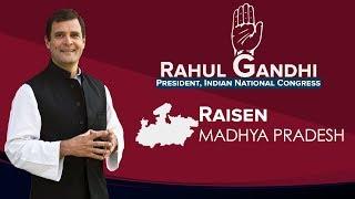 LIVE: Congress President Rahul Gandhi addresses a public gathering in Raisen, Madhya Pradesh