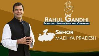 LIVE: Congress President Rahul Gandhi addresses a public gathering in Sehore, Madhya Pradesh