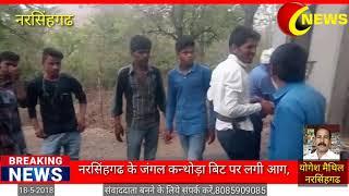 नरसिंहगढ के जंगल में लगी आग,प्रशासन मोके पर