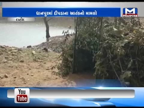 Dahod: Forest Department doubt that the leopard has moved towards Madhya Pradesh