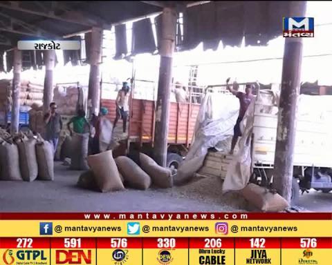Rajkot: Farmers' turn will come late for the registration of Green Gram & Black Gram