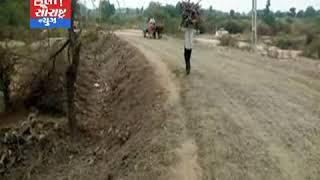ધારી-સમઢિયાળા રોડના કામમાં લોટ પાણીને લાકડા