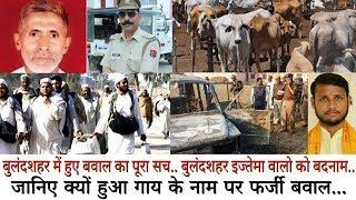 तब्लीगी इज्तमा के दिन गोकशी पर बवाल कराना एक बड़ी साजिश.. जानिए क्यों हुआ गाय के नाम पर बवाल..