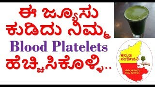 How to increase Blood Platelets Count Naturally Kannada | Kannada Sanjeevani
