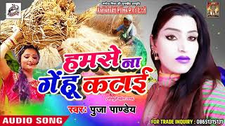 New Chaita SOng # हमसे ना गेंहू कटाई - Pooja Pandey - New Latest Bhojpuri Chaita Song 2018