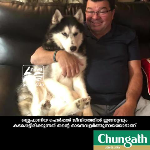 dog detects cancer of owner