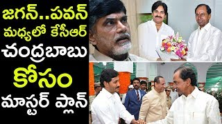 TRS Will Impact AP Politics in 2019 : KCR || KCR Alliance With Pawan To Checkmate Babu|
