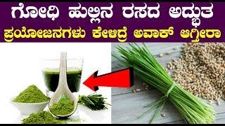 ಗೋಧಿ ಹುಲ್ಲಿನ ರಸದ ಅದ್ಭುತ ಪ್ರಯೋಜನಗಳು ಕೇಳಿದ್ರೆ ಅವಾಕ್ ಆಗ್ತೀರಾ || Kannada Health Tips