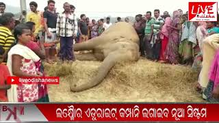 Speed News : 14 Dec 2018 || SPEED NEWS LIVE ODISHA 1