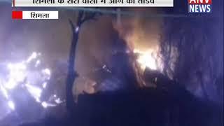 शिमला के सेरी वासा में लगी आग || ANV NEWS