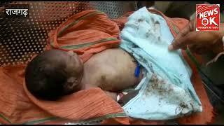 राजगढ़ अस्पताल के ट्रामा से नवजात को मुँह में दबा ले गया कुत्ता। बच्चे की मौत ।