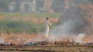 Less stubble burning but pollution continues to choke Delhi-NCR
