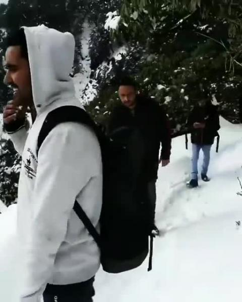 Fresh Snowfall at Triund Trek