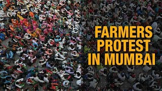 March to Azad Maidan: Why agrarian distress forcing farmers to protest in Mumbai