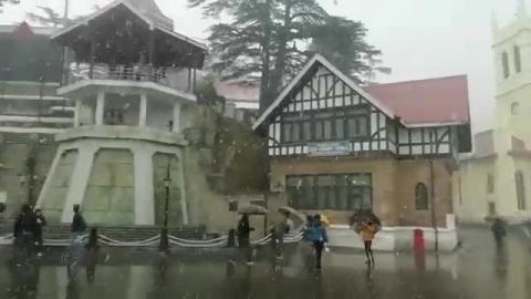 Shimla - Snowfall