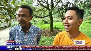 Travel Notes: Serunya Budi Daya Durian
