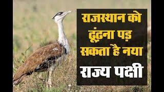 राजस्थान को ढूंढ़ना पड़ सकता है नया राज्य पक्षी || DPK NEWS