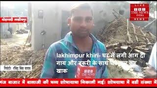 lakhimpur khiri- घर में लगी आग दो गाय और बकरी के साथ घर जल कर खाक