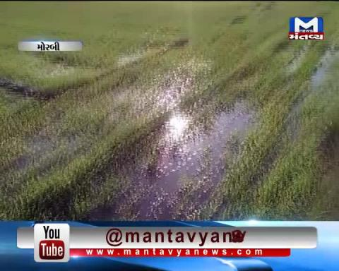 Morbi: Farms filled with water due to Valve leakage