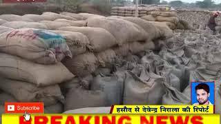 धान मंडी से 339 बोरा अमानक धान जब्त cglivenews