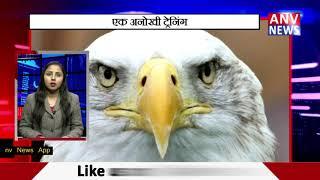 इस पक्षी की होती है कमांडों की तरह ट्रेनिंग || ANV NEWS