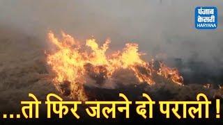 किसानों, जलने दो परालीः खट्टर के मंत्री कहते हैं इससे प्रदूषण नहीं होता