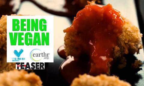 Le Veganning - A Teaser to Veganuary India 2019
