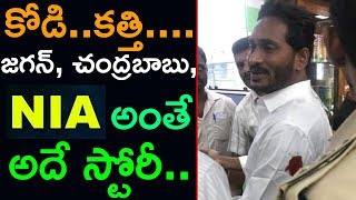 NIA To Investigate YS Jagan Attack Case | High Court Handed Over YS Jagan Case To NIA |Top Telugu TV