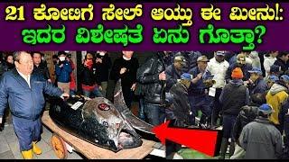 21 ಕೋಟಿಗೆ ಸೇಲ್ ಆಯ್ತು ಈ ಮೀನು! ಇದರ ವಿಶೇಷತೆ ಏನು ಗೊತ್ತಾ | Fish sold 21 crore rupees