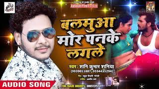 बलमुआ मोर पनके लगले -  Bhatar Mor Panake Lagle - Shani Kumar Shaniya - Bhojpuri Songs 2019 New