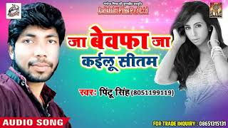 Bhojpuri Sad Song 2018 - जा बेवफा जा कईलू सीतम - Pintu Singh - Sad Song 2018