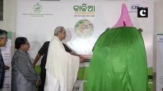 Naveen Patnaik unveils Odisha agriculture fair Krushi