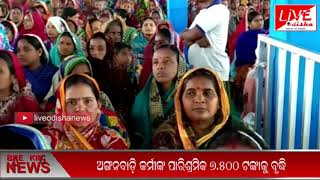 Speed News : 12 Jan 2019 || SPEED NEWS LIVE ODISHA