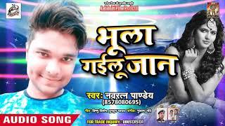 नवरत्न पाण्डेय (2019) का सबसे बड़ा धमाका Song -Bhula Goilu Jan- DJ Song 2019