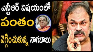Nagababu Vs Balakrishna War Effect On NTR Kathanayakudu   Mega Fans Vs Balakrishna   Topo Telugu TV