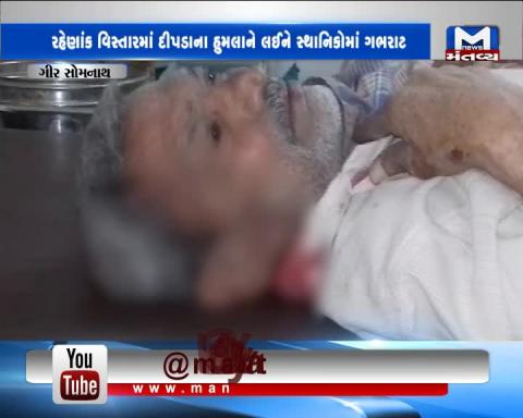 Gir Somnath: Leopard attacked on an old man