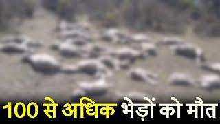 Ramban में 100 से अधिक भेड़ों की मौत, कारणों का अभी तक खुलासा नहीं