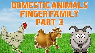 Domestic Animals Finger Family - 3 | Animal Finger Family Song