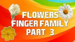 Flowers Finger Family - 3 | Cartoon Flowers | Nursery Rhymes with Lyrics