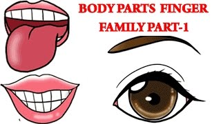 Body Parts Finger Family - 1 | Learn Human Body Parts